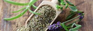 Caractéristiques et utilisations des herbes de Provence